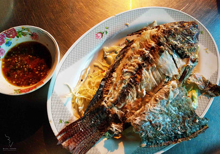 Street Food of Bangkok