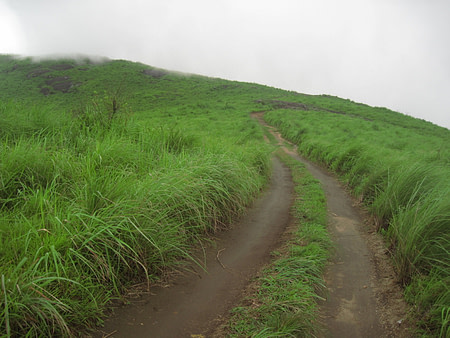 Track to the hike