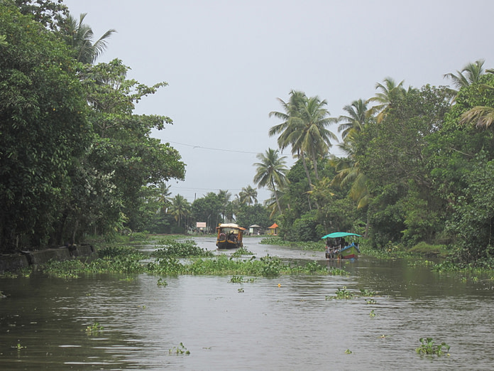 Alappuzha or Allepy backwaters